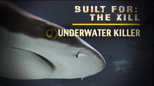 Underwater Killer