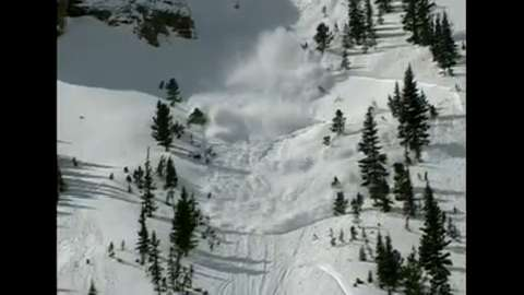 Caught in an Avalanche