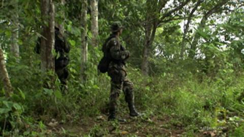 Entering Panama's Dangerous Darien Gap