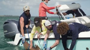 Tagging a shark in the Bahamas. This... [Photo of the day -  6 JULY 2020]