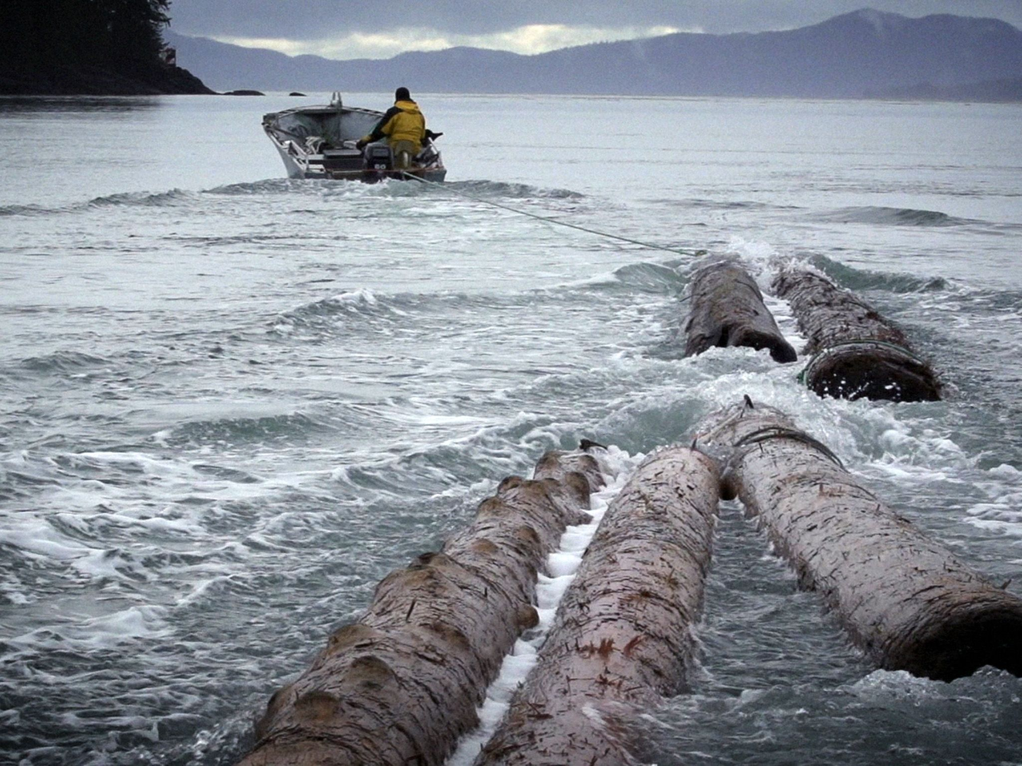 Sam collects logs for firewood. This image is from Lawless Island Alaska. [Photo of the day - September 2020]