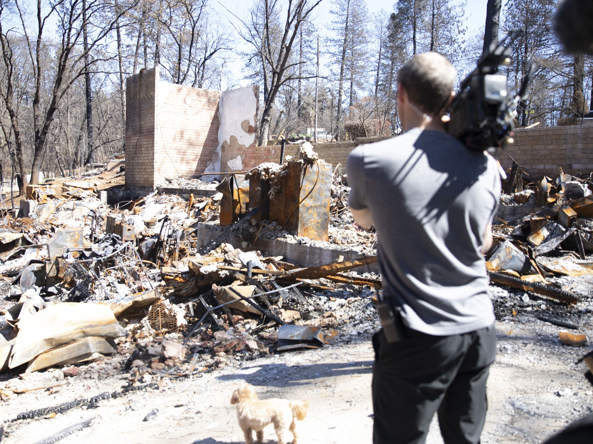 Director of Photography, Lincoln Else, films debris strewn property in Paradise, CA. This image... [Photo of the day - November 2020]