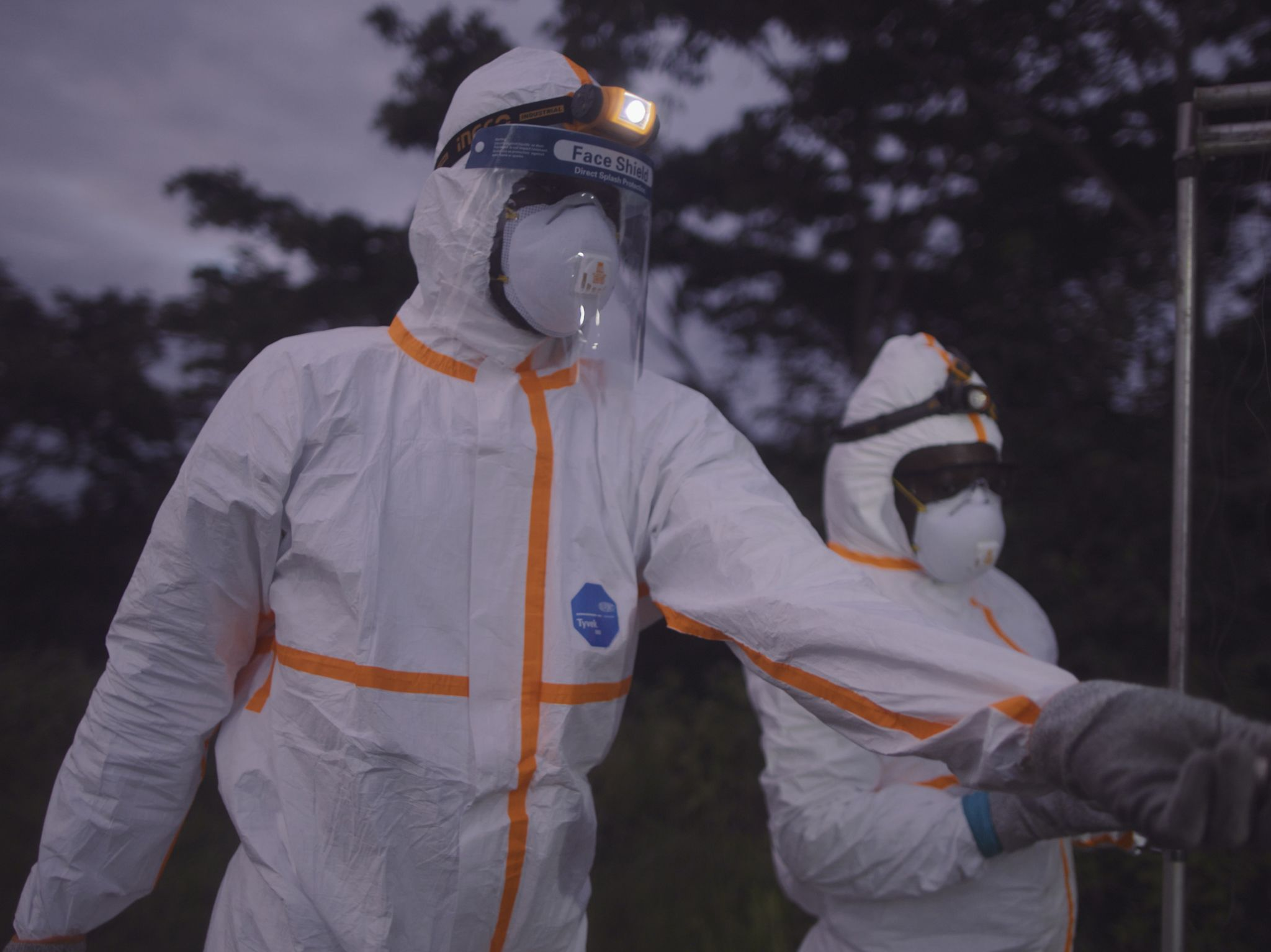 An EcoHealth Alliance team of researchers in hazmat suits sets up a harp trap outside of a bat... [Photo of the day - November 2020]