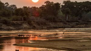 Sunset. This image is from Africa's... [Photo of the day - 24 FEBRUARY 2021]