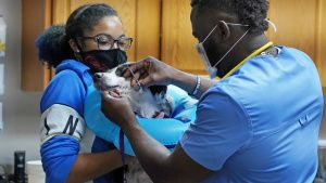 Vet Tech Darrie holds Shay the... [Photo of the day -  7 MAY 2021]