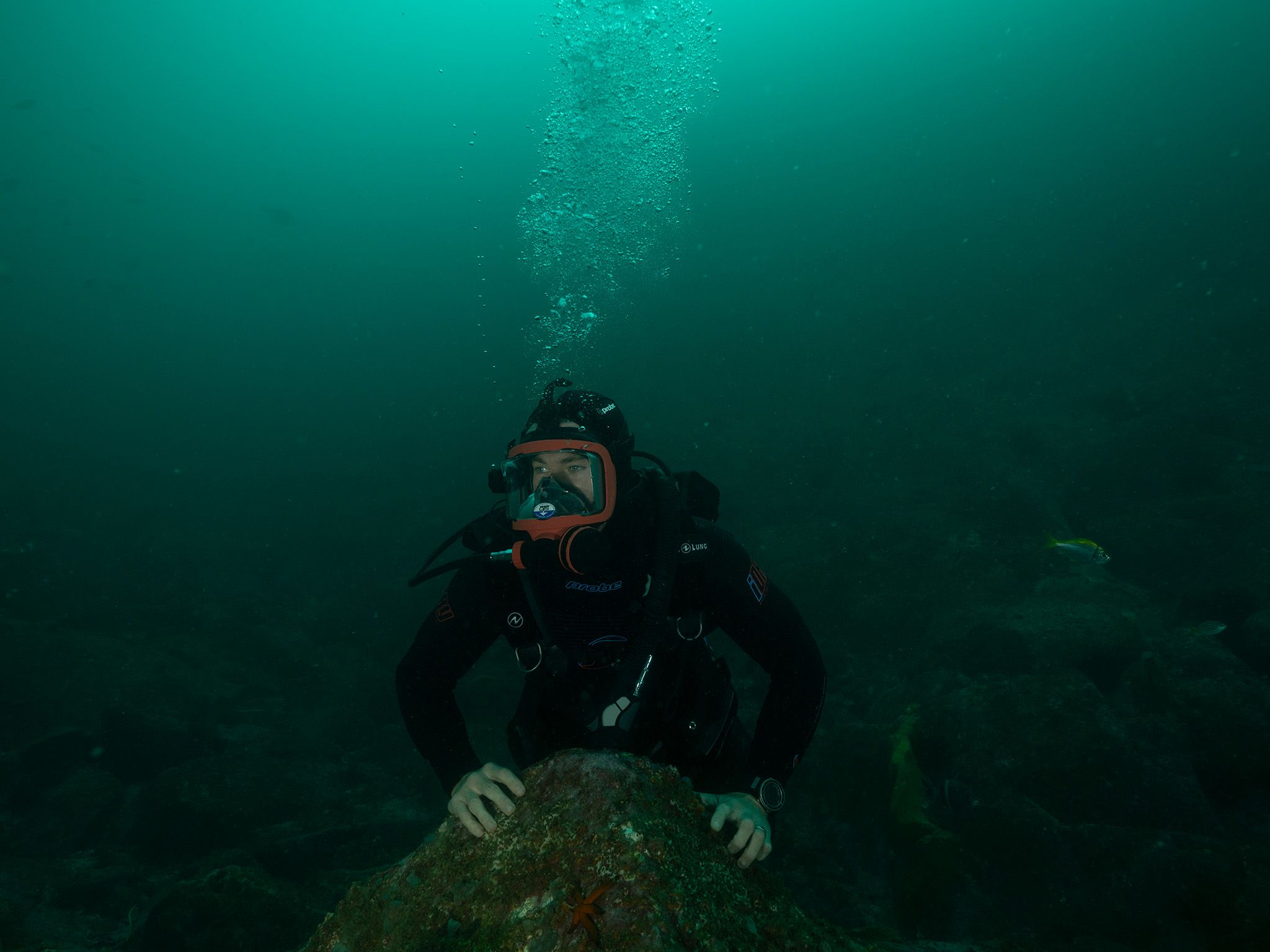 Chris Hemsworth diving at South West Rocks - Fish Rock. This is part of Shark Beach with Chris... [Photo of the day - July 2021]