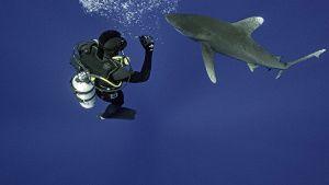 Marine researcher Eric Schneider... [Photo of the day - 22 JULY 2021]