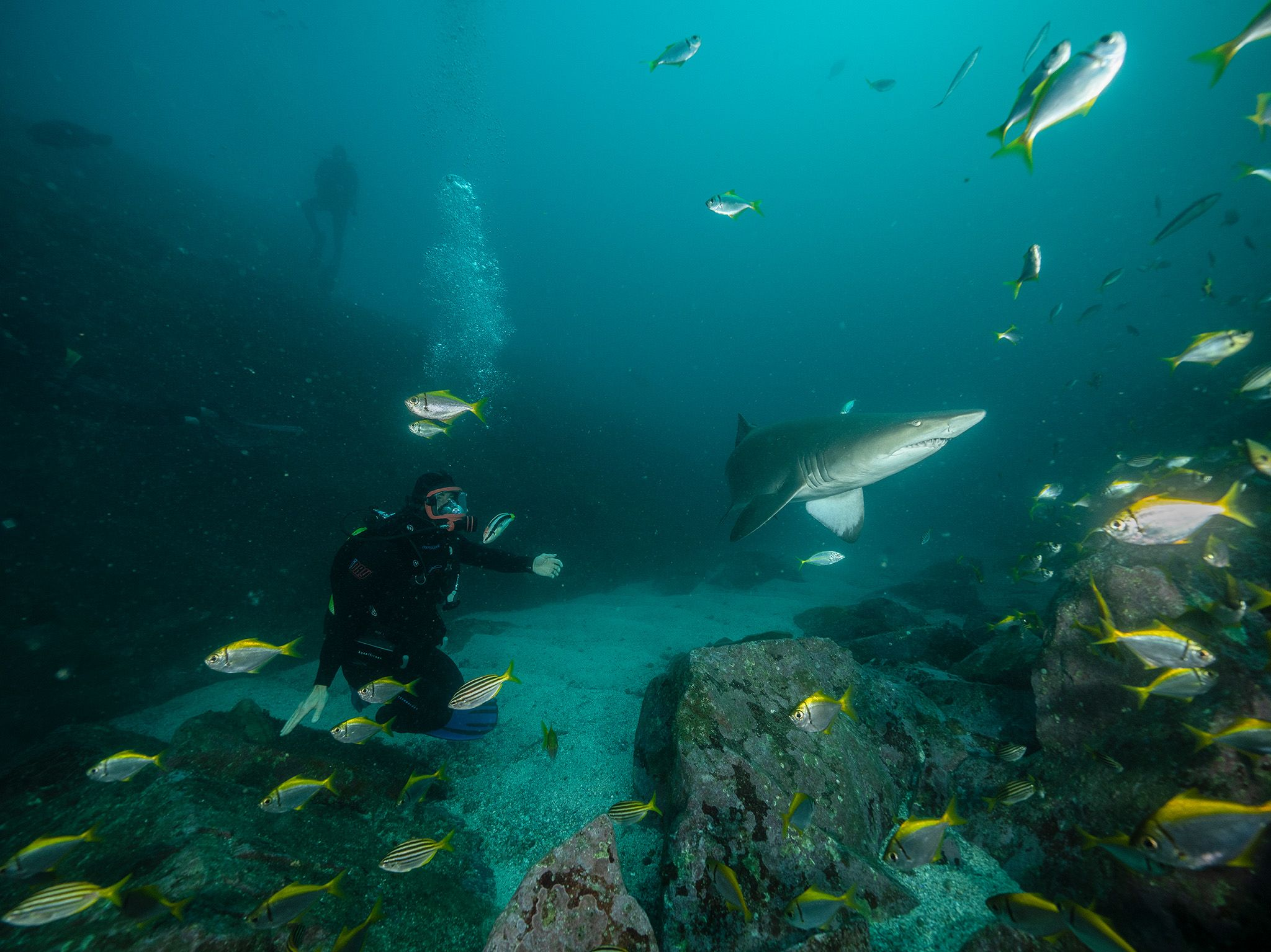 Chris Hemsworth diving at Fish Rock, South West Rocks. This is part of Shark Beach with Chris... [Photo of the day - July 2021]