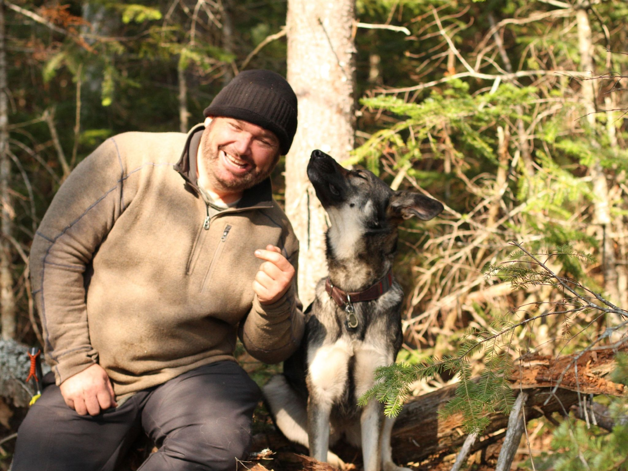 German shepherd Nala looks to her owner, Chad. This is from Called to the Wild. [Photo of the day - August 2021]