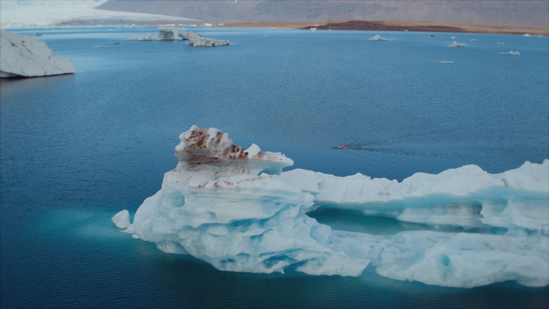 Ice swimmer swimming in the lagoon. This is from Europe from above, season 4. [Photo of the day - September 2021]