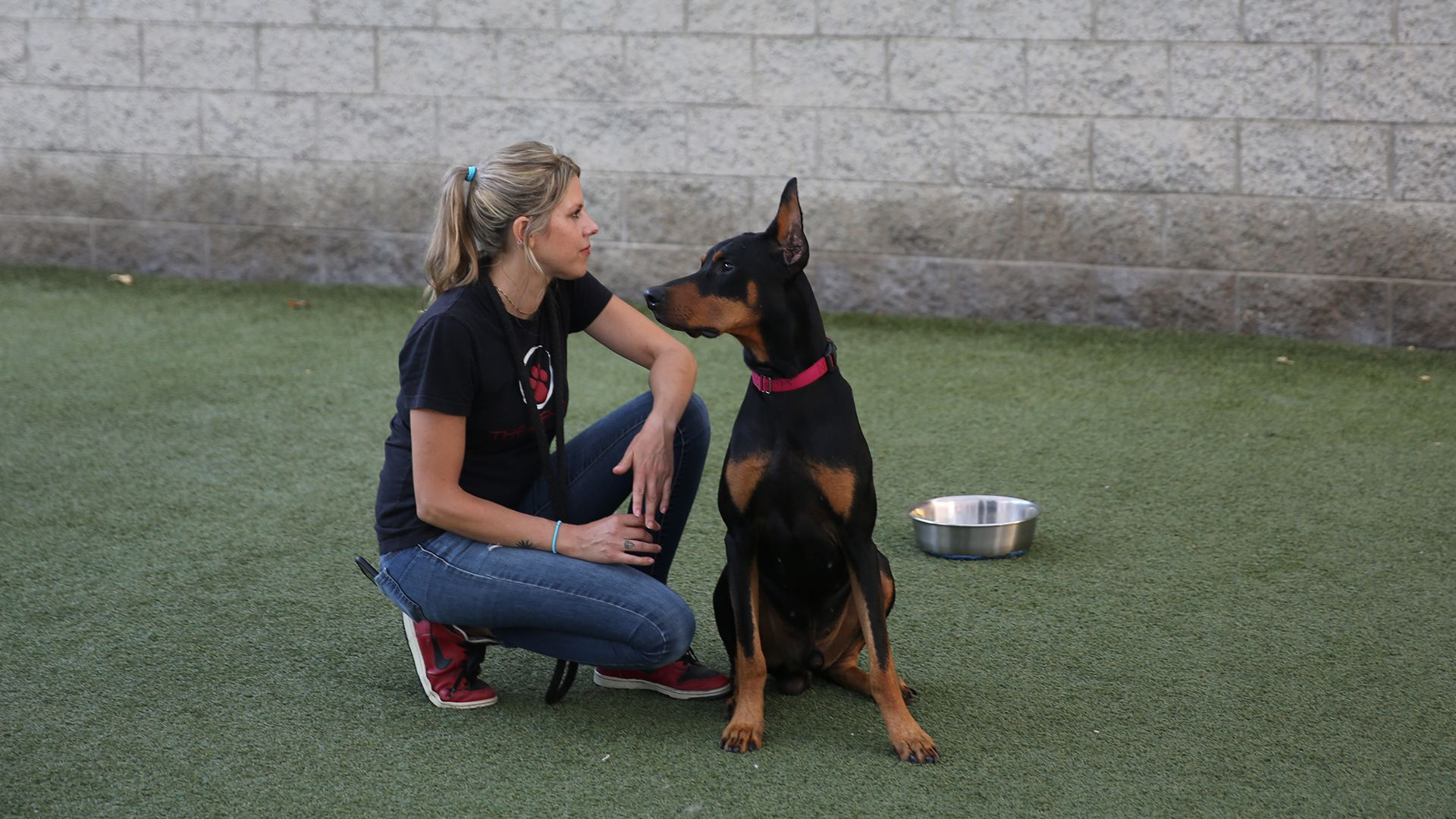Trainer Stef DiOrio working with dog Nero in the Zen Yard. This is from Dog Impossible [Photo of the day - October 2021]
