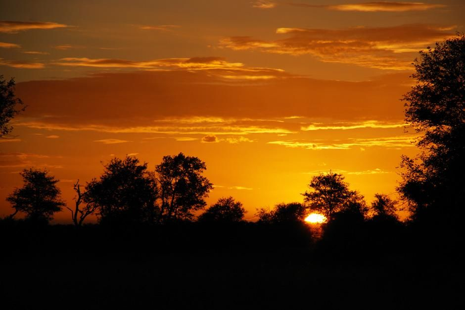 Sunset in the bush. Singita Kruger National Park is situated where two rivers meet, in an... [Photo of the day - August 2012]