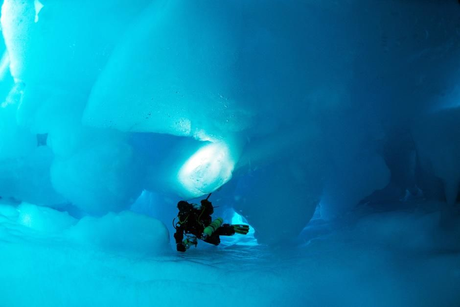 Great Canadian North: Diving under the pole. This image is from Deepsea Under the Pole. [Photo of the day - سپتامبر 2012]