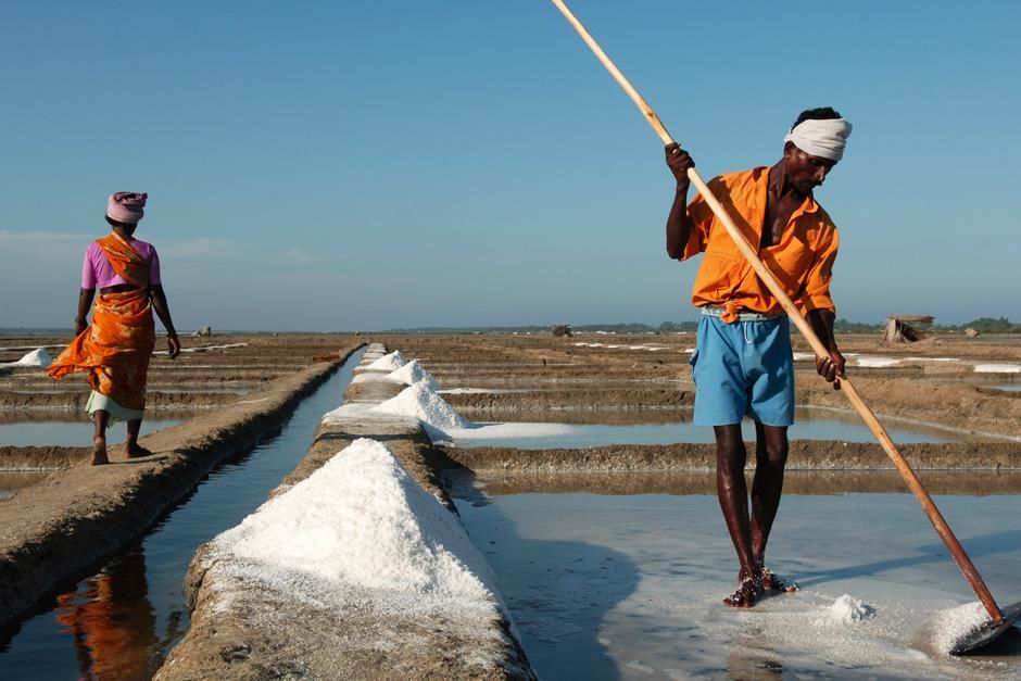 Man collecting salt. Tharangambadi, Tamilnadu, India. This image is from Laya Project. [Photo of the day - October 2012]