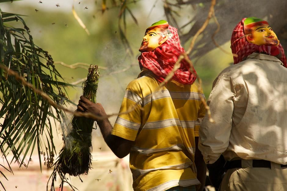 Richard Terry assists a group of honey hunters as they use burning foliage to smoke a swarm of... [Photo of the day - دسامبر 2012]