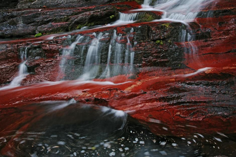 قاع أحد الممرات المائية مصبوغ باللون القرمزي بسبب... [Photo of the day - أكتوبر 2011]