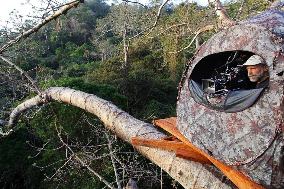 داريان بروفينس، بنما: حاملاً كاميرته ومختبئًا أعلى... [Photo of the day - أغسطس 2013]