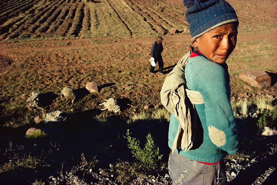 Near Puno, Peru: A car killed six of this tattered clothed young shepherd's flock. This image is... [Photo of the day - October 2013]