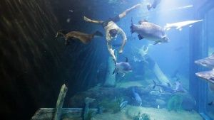 Each day National Geographic Channel brings you an amazing picture from around the globe.-2013-11-14 00:00:00