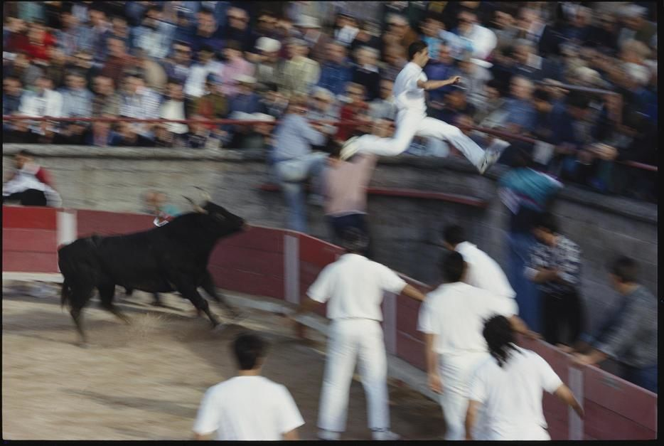 "A ""razeteur"" jumps for safety ahead of a charging bull in Saint Remy de Provence. France. [Photo of the day - December 2011]"