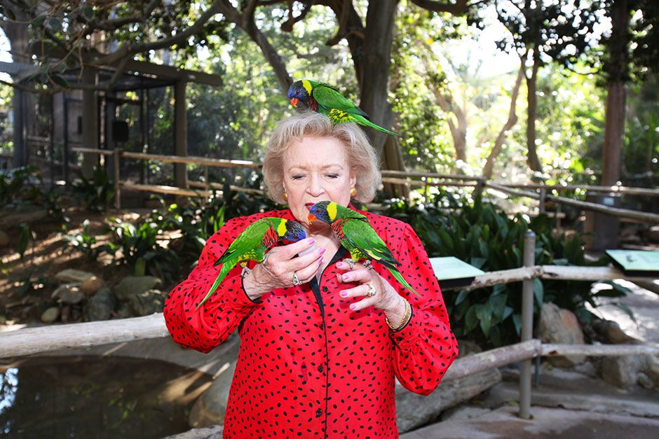 San Diego Safari Park, San Diego, California, USA: Betty White feeding some lorikeets. This... [Photo of the day - ژانویه 2014]