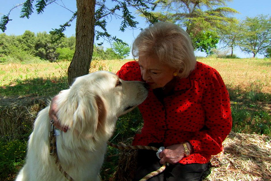 San Diego, California, USA: Betty White sitting with dog, Yeti, an Anatolian shepherd at the San... [Photo of the day - ژانویه 2014]