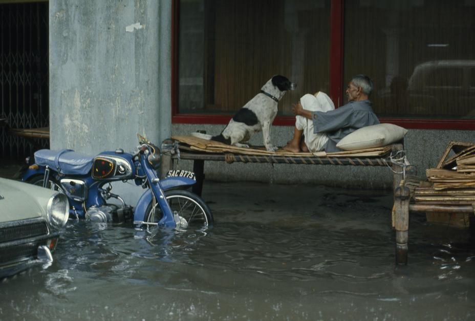نگهبان شب به همراه سگش بر روی تختی در خیابانی پر از آب... [Photo of the day - فوریه 2011]