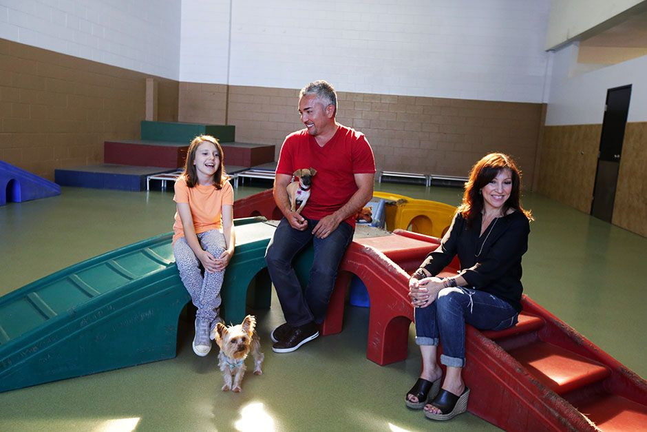 Los Angeles, CA, USA: Cesar working with the Guerrero family. This image is from Cesar Millan... [Photo of the day - January 2014]