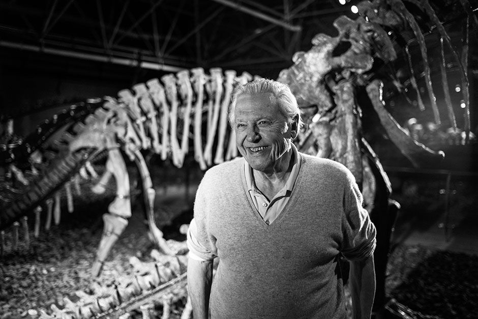 Lufeng Dinosaur National Geopark, China:  David in a museum with a dinosaur. This image is from... [Photo of the day - فوریه 2014]