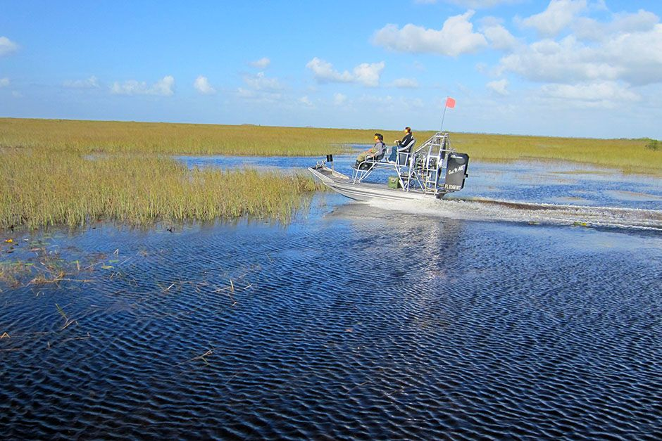 USA: Jose and Francis speed along the swamps as passengers in an airboat. This image is from... [Photo of the day - فوریه 2014]