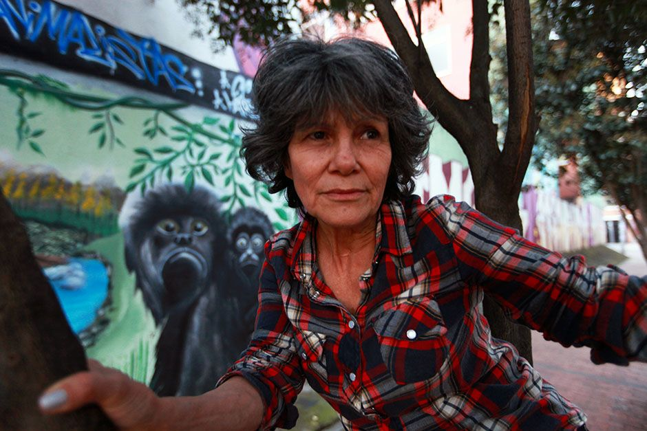 Bogota, Colombia: Marina Chapman close up in a tree in front of a mural. This image is from... [Photo of the day - March 2014]