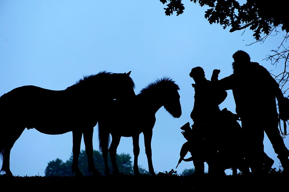 Neadrathal, Germany: Horses and crew at twilight. This image is from Hitler's Jurassic Monsters. [Photo of the day - ژوئن 2014]