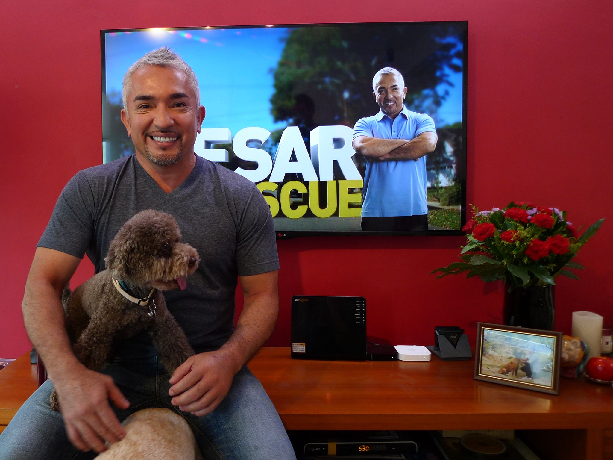Hong Kong, China: Cesar Millan. This image is from Cesar To The Rescue Asia. [Photo of the day - November 2014]