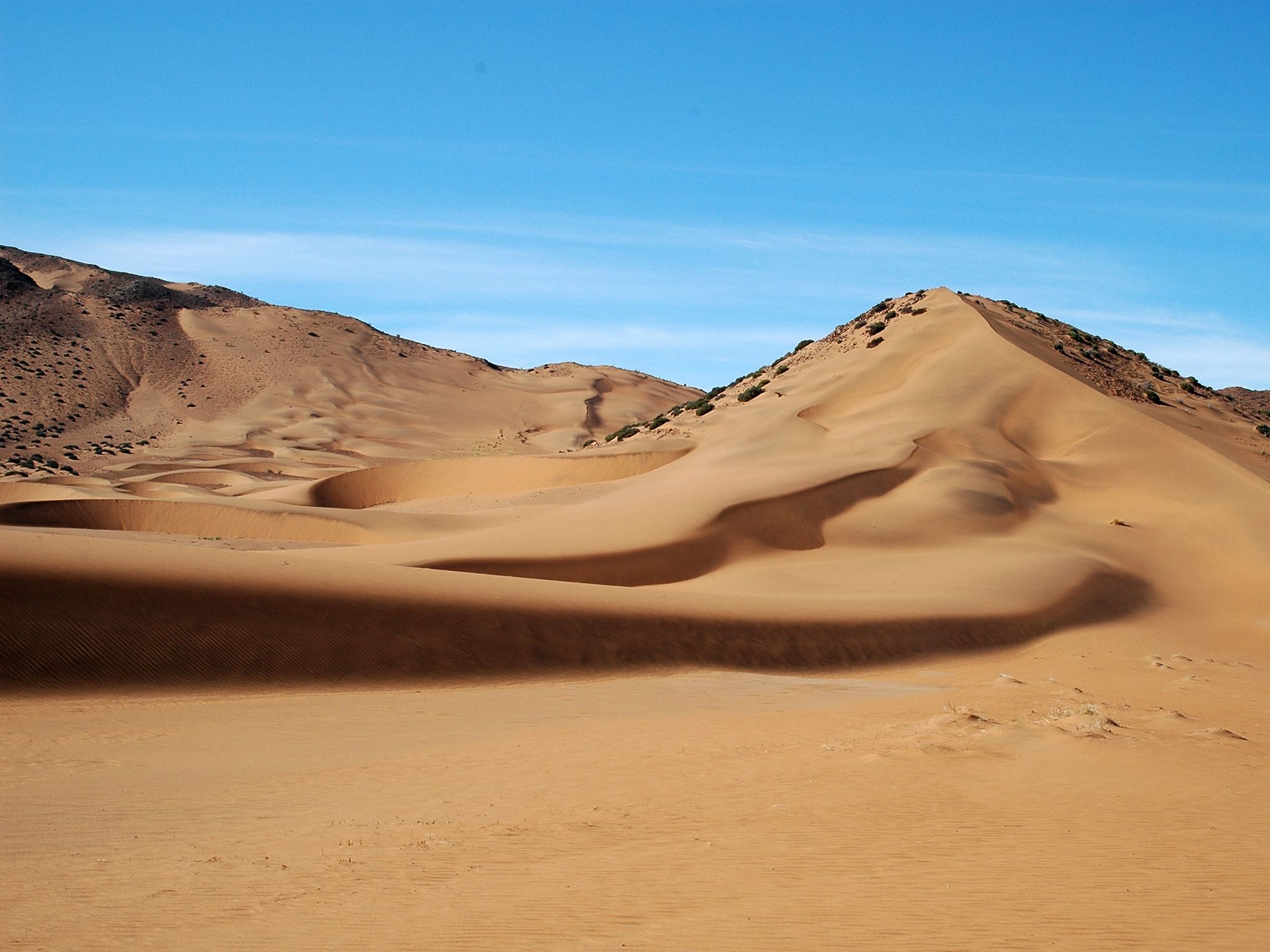 "The Namib Desert, the oldest desert in the world. The harsh desert environment seems ""deserted""... [Photo of the day - November 2014]"