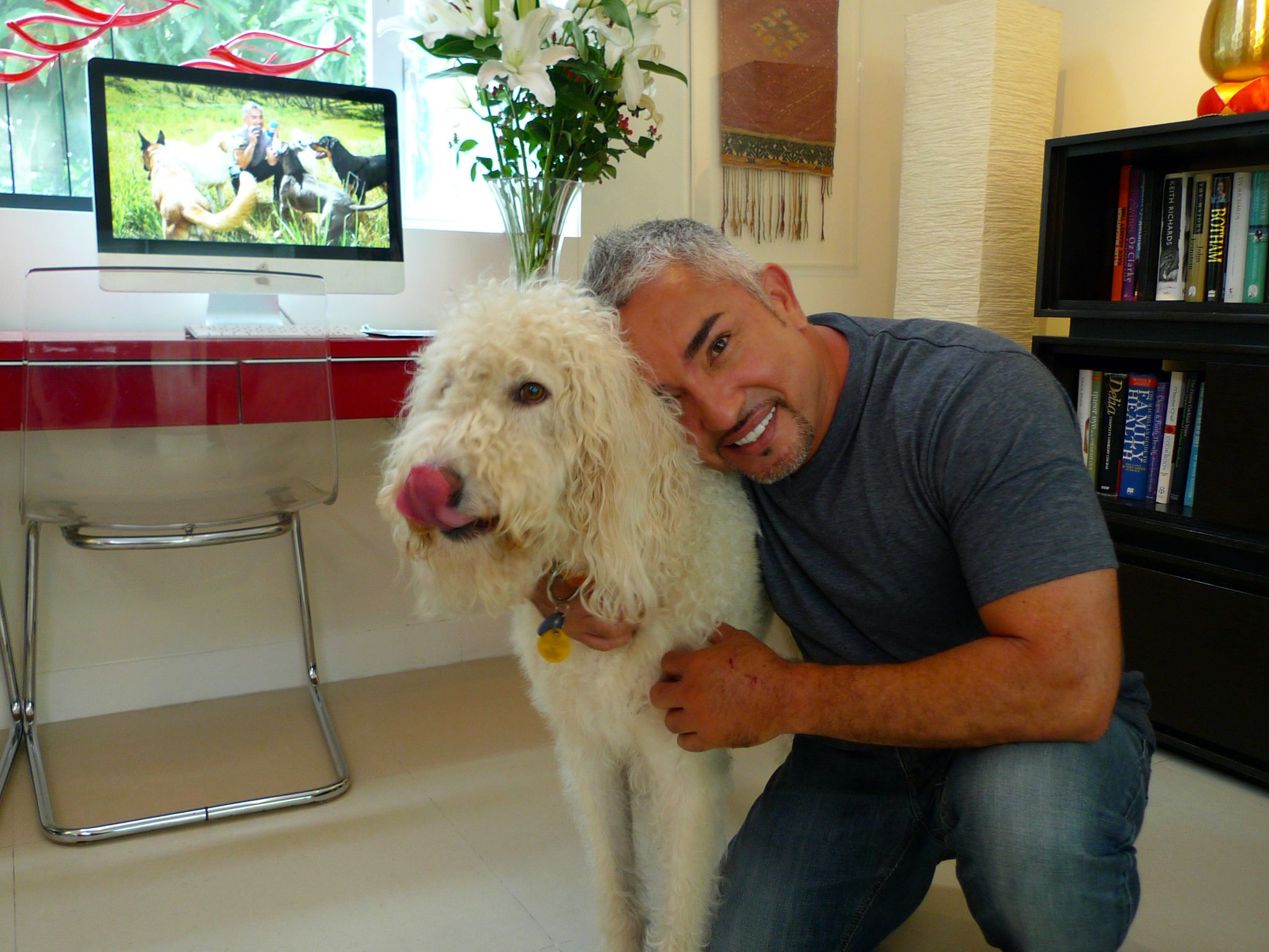 Hong Kong, China: Cesar poses with a dog. This image is from Cesar To The Rescue Asia. [Photo of the day - November 2014]