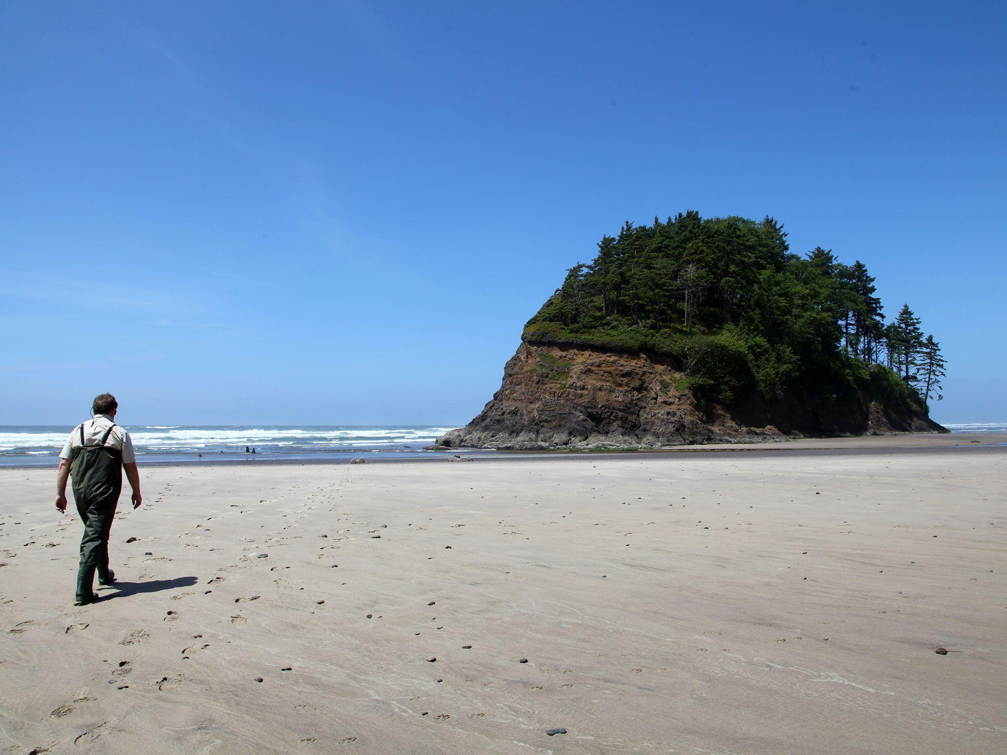 Neskowin, OR, USA: Professor Chris Goldfinger, Paleo Seismologist at Oregon State University... [Photo of the day - December 2014]