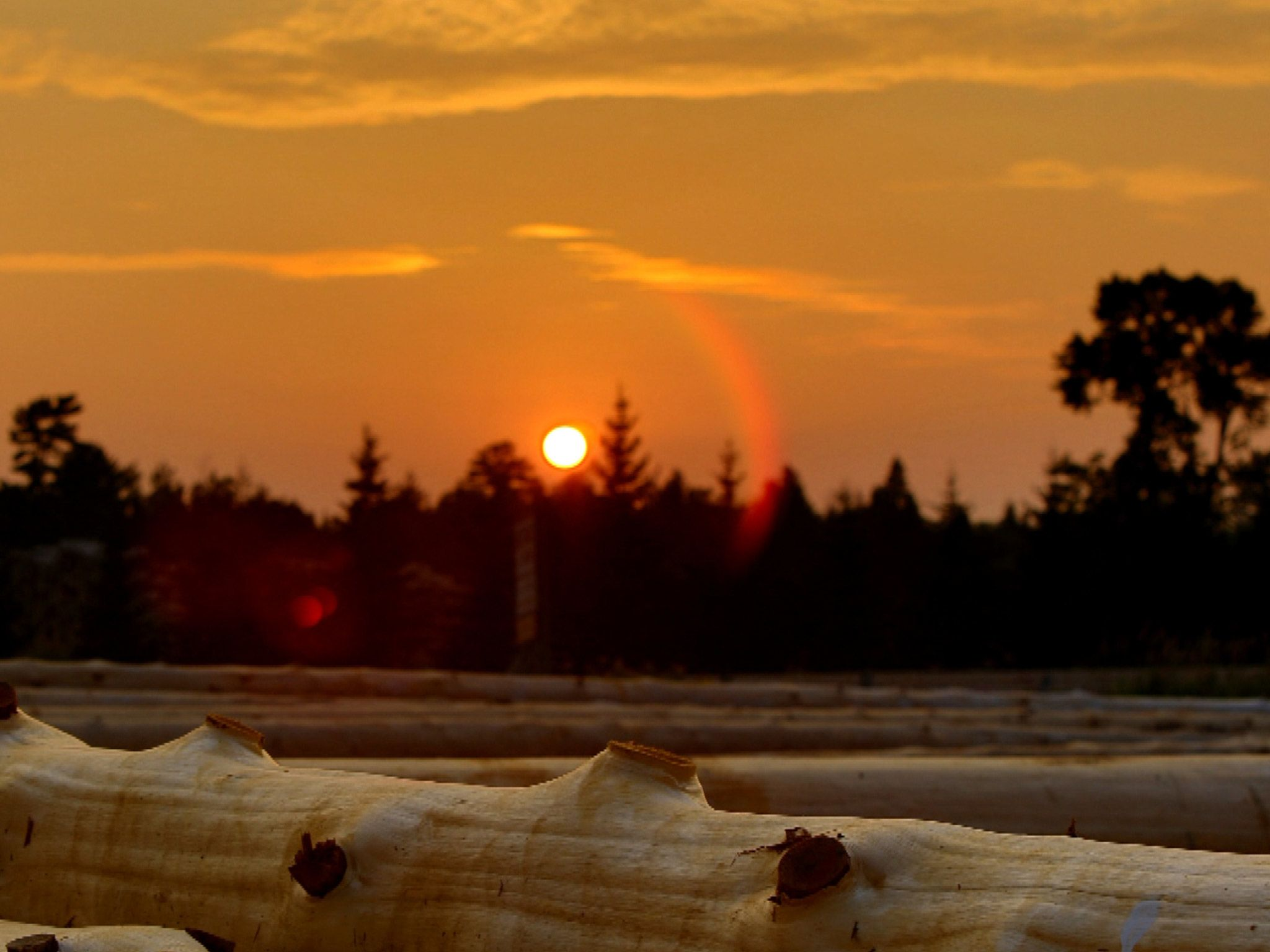 Utah: Sunset at the log yard. [Photo of the day - ژولیه 2015]