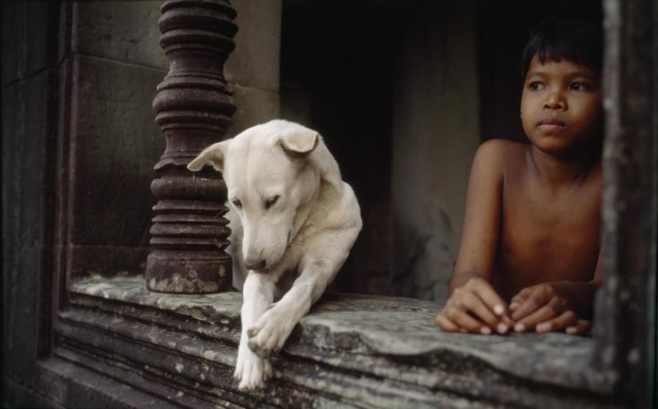 A boy and a dog at Angkor War temple. [Photo of the day - May 2011]