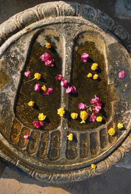 Buddha's footprings carved in stone and strewn with flowers at the Bodh Gaya Monastery in Bihar... [Photo of the day - می 2011]