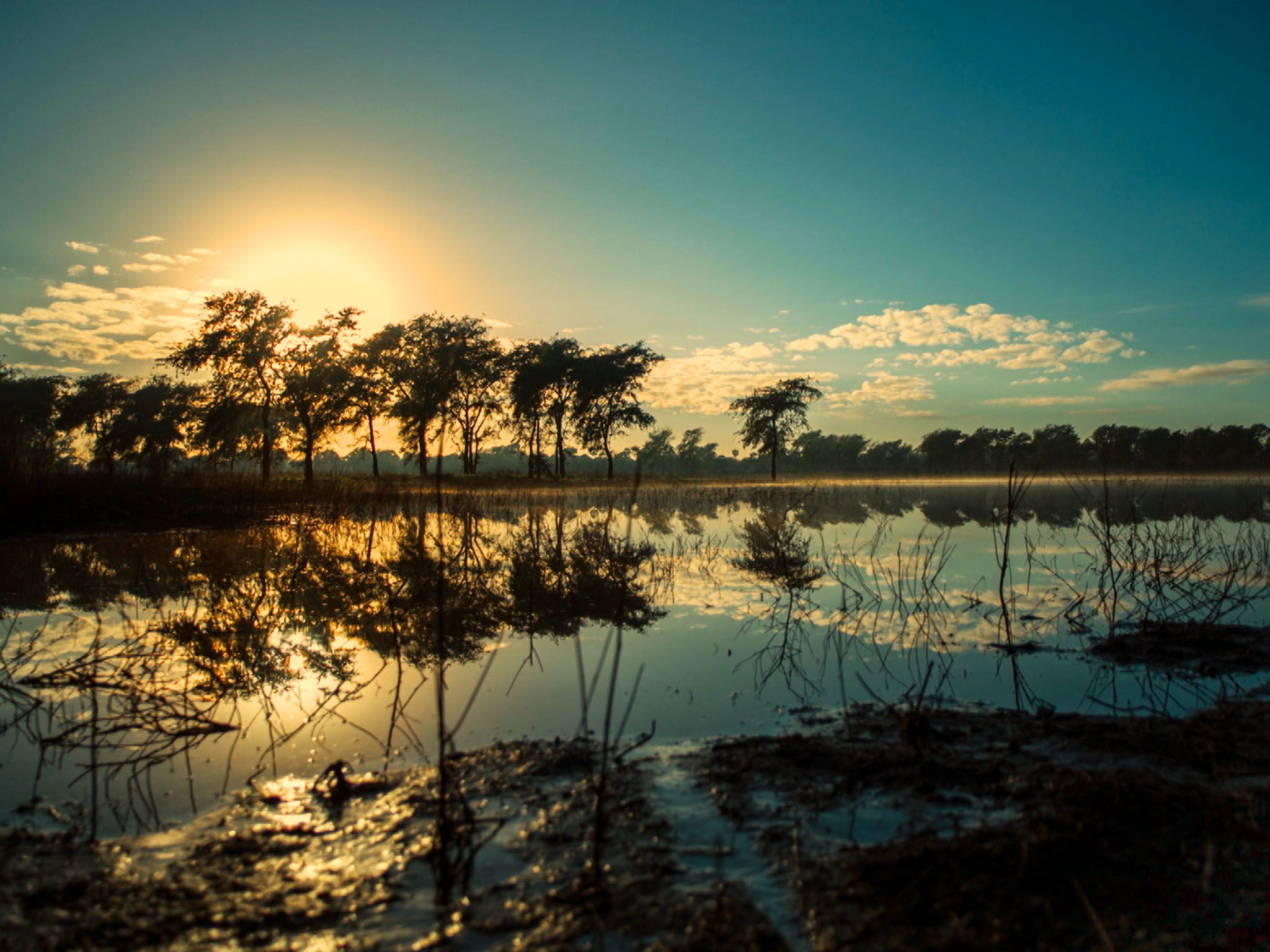 Mozambique: Wet season on the floodplain.  Gorongosa National Park, Mozambique. This image is... [Photo of the day - October 2015]