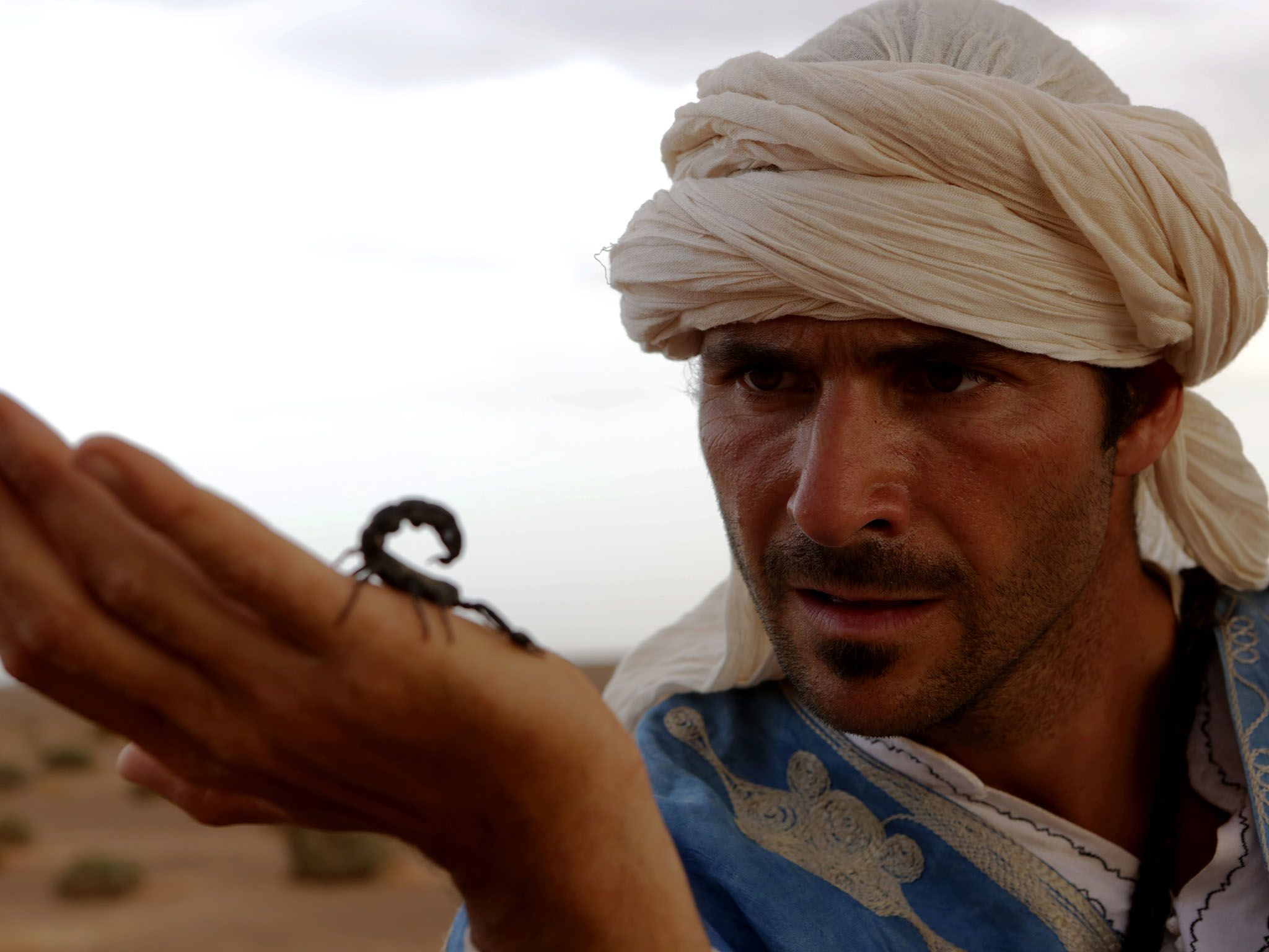 Morocco: Hazen holds a poisonous scorpion. This image is from Primal Survivor. [Photo of the day - January 2016]