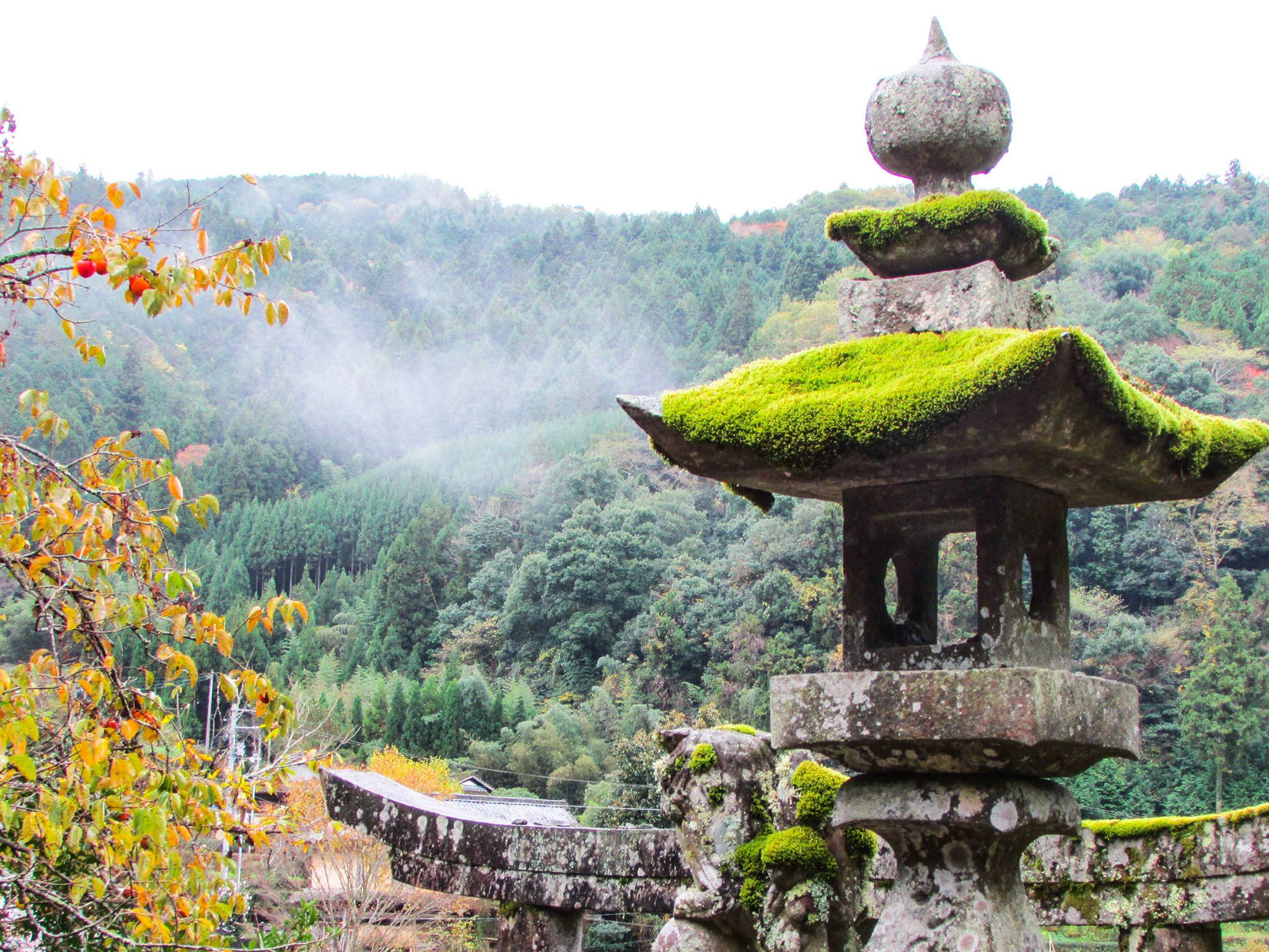 Matsuyama, Japan: Japanese ancient temple ruins with large forest in background. This image is... [Photo of the day - سپتامبر 2016]