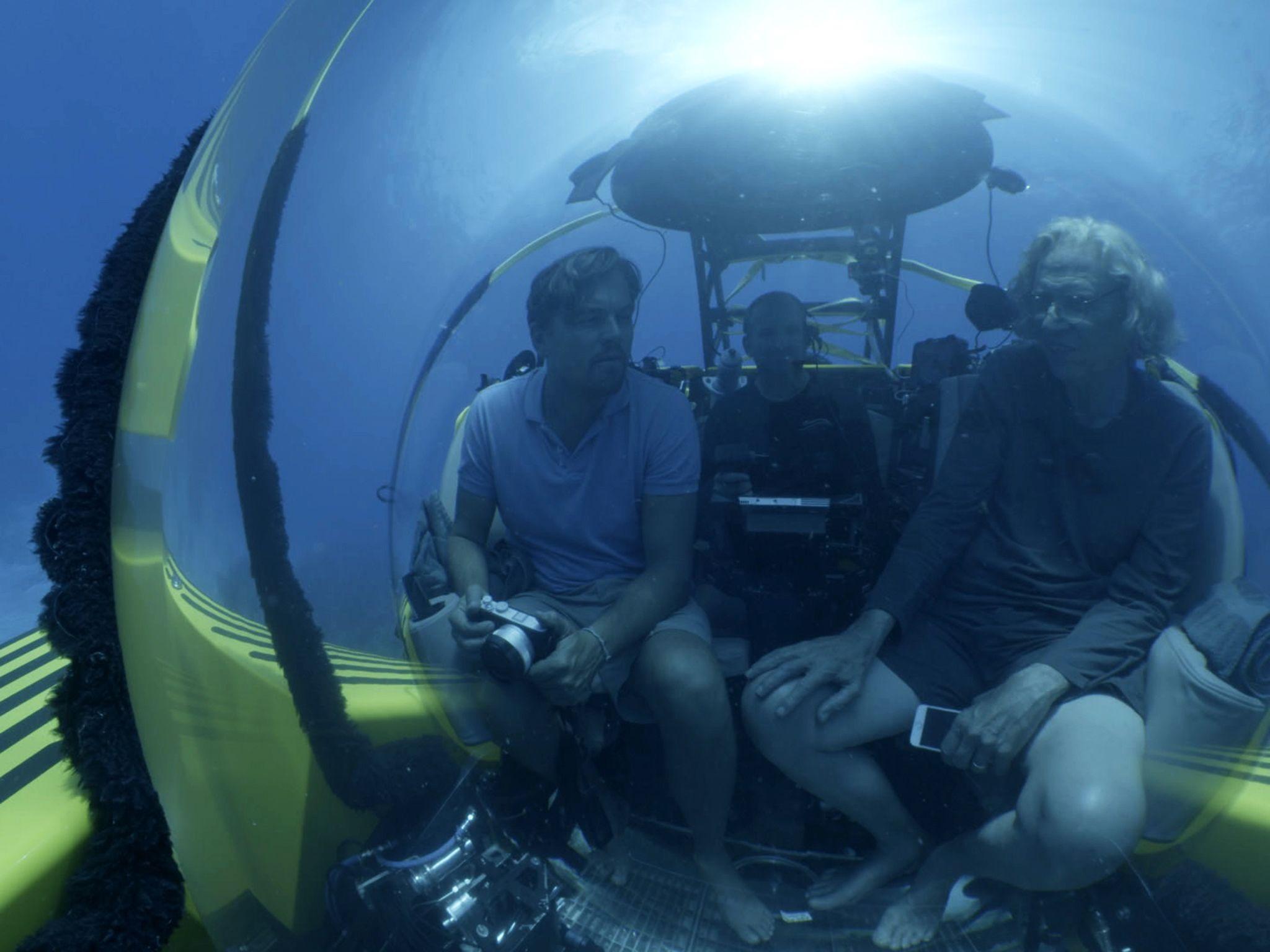 جزر الباهاما: يغوص ليوناردو مع جيرمي جاكسون للتحدث... [Photo of the day - أكتوبر 2016]
