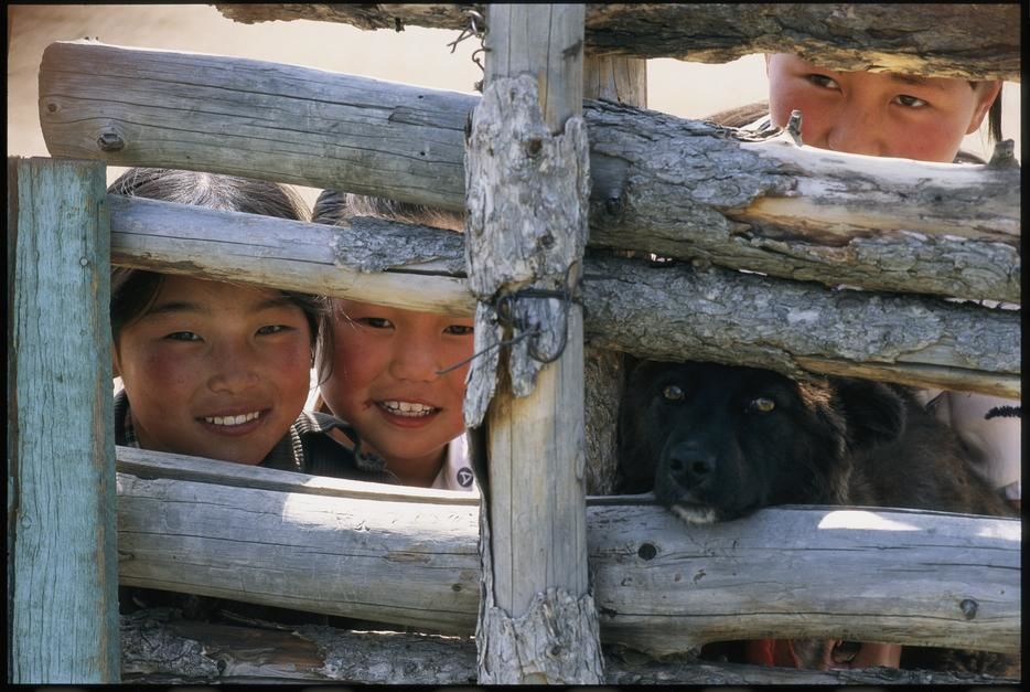 A dog and children of Mongolian herders look through a fence. Mongolia. [Photo of the day - August 2011]