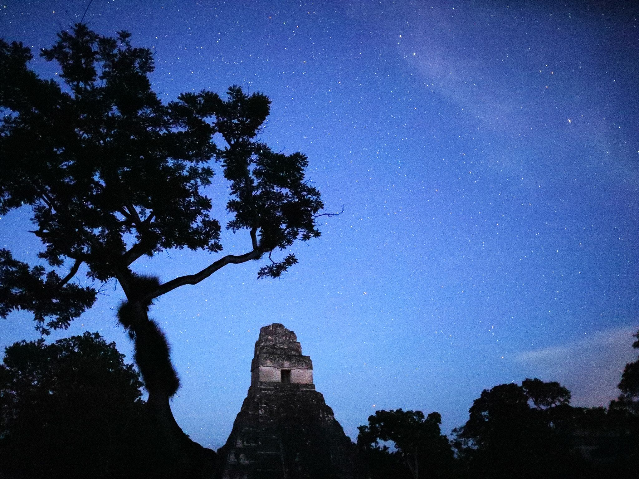 Tikal National Park, Guatemala:  Starry sky at night in Tikal National Park (This image is from... [Photo of the day - February 2018]