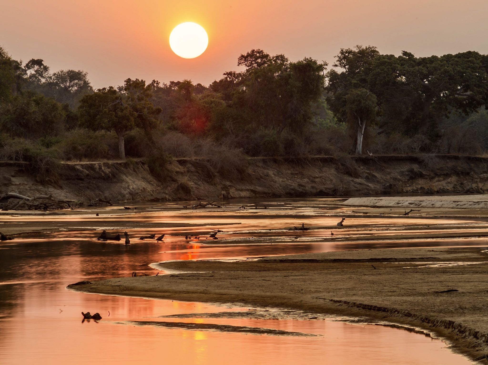 Sunset. This image is from Africa's Hunters. [Photo of the day - February 2018]