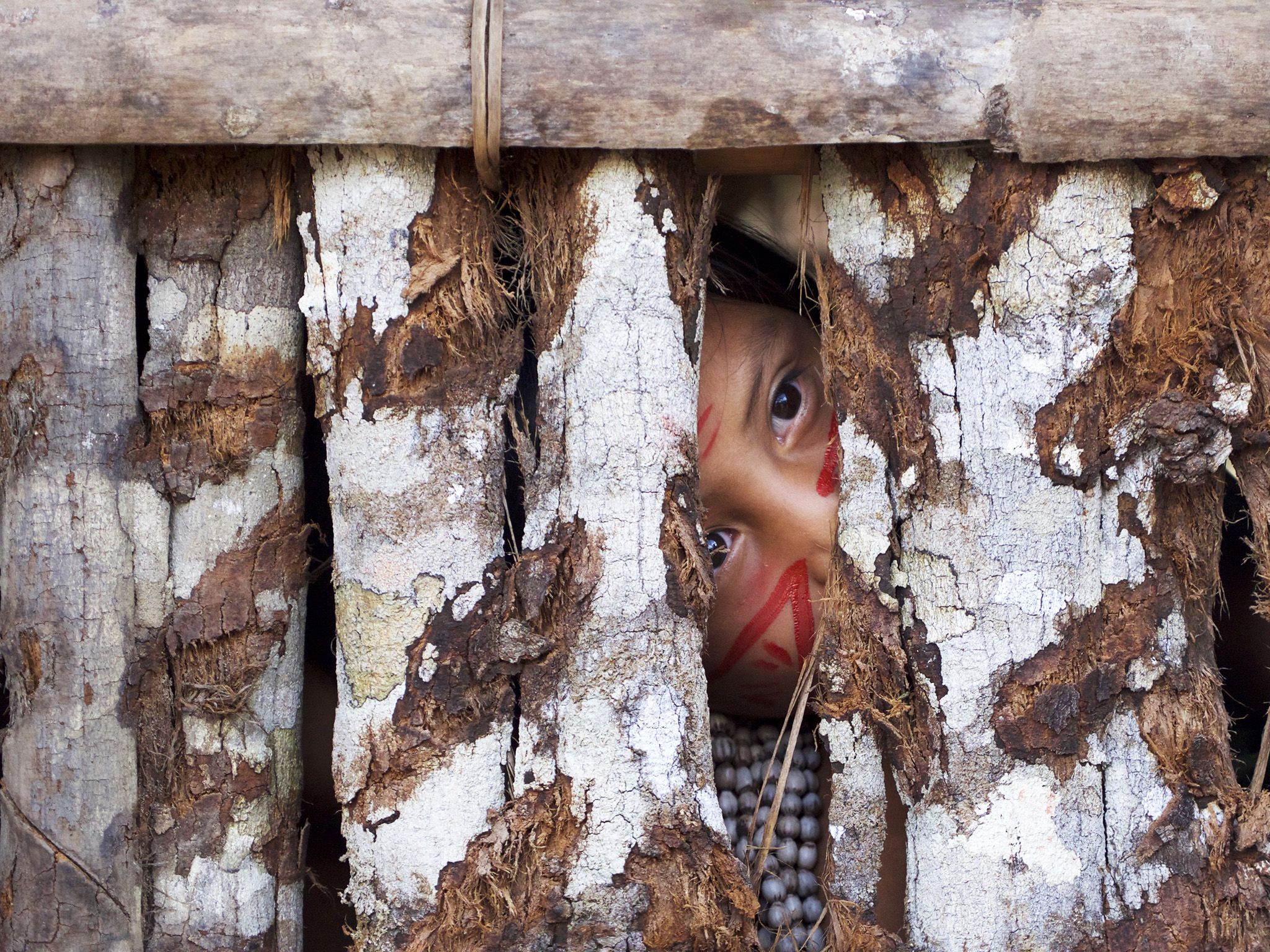 Amazon, Brazil:  A young child in an Amazonian village.  This image is from One Strange Rock. [Photo of the day - March 2018]