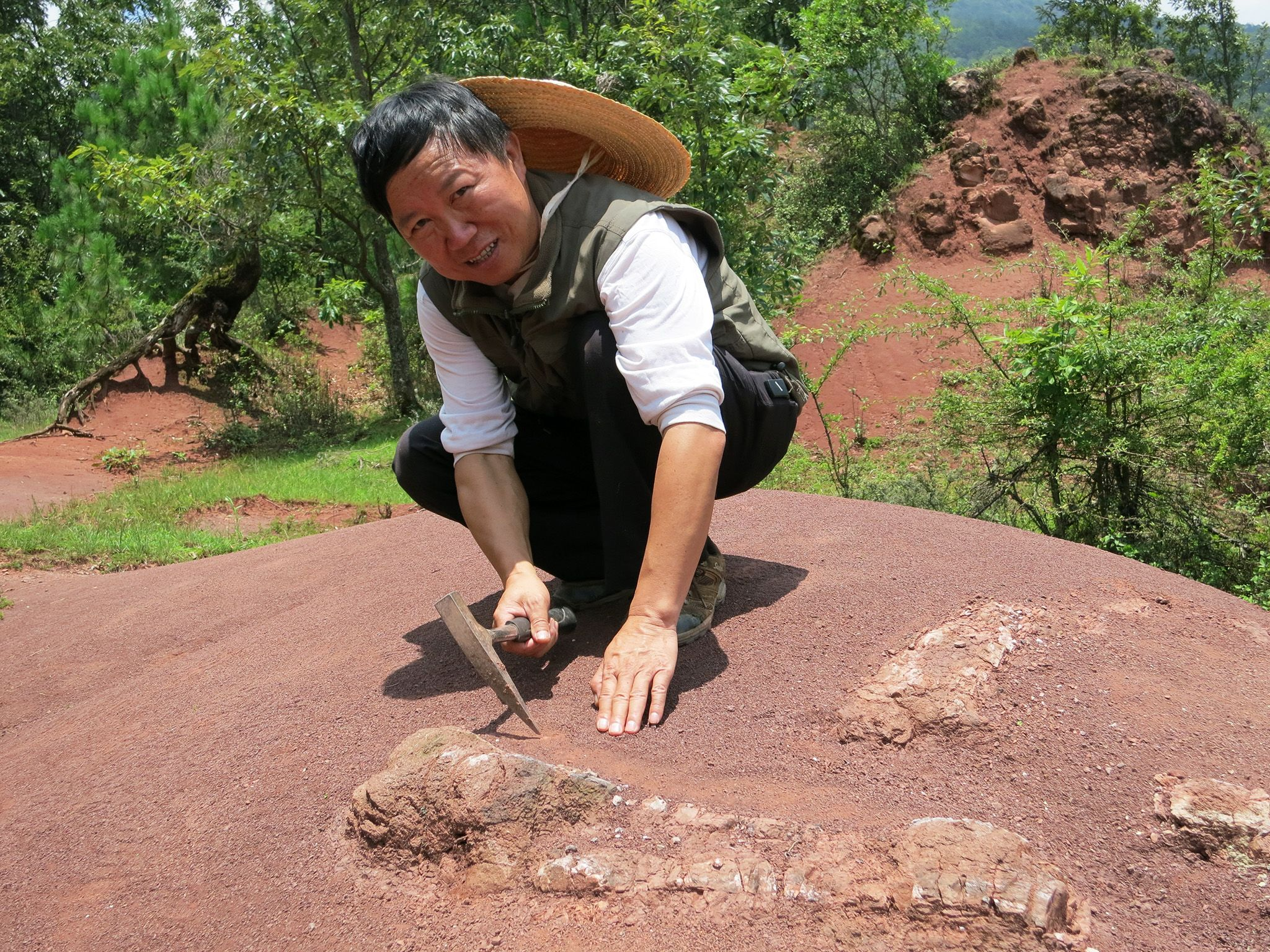 Lufeng, Yunnan Province, China:  Mr. Wang excavating a newly discovered fossil in Lufeng.  This... [Photo of the day - August 2018]