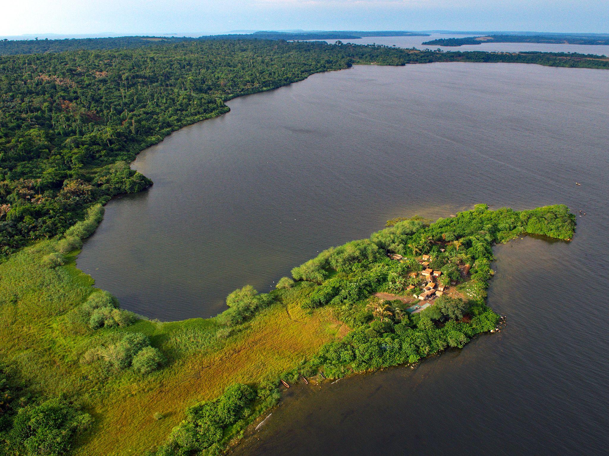 Uganda:  Island village, Lake Victoria. This image is from Wild Uganda. [Foto del giorno - September 2018]