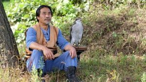Korea:  Falconer and Goshawk sitting... [Photo of the day - 17 JANUARY 2019]
